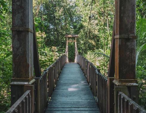 Pont Accueil